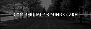 Commercial Gounds Care